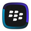 BlackBerry Link para Windows XP