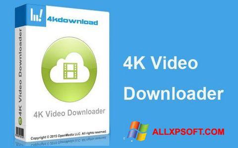 Screenshot 4K Video Downloader para Windows XP