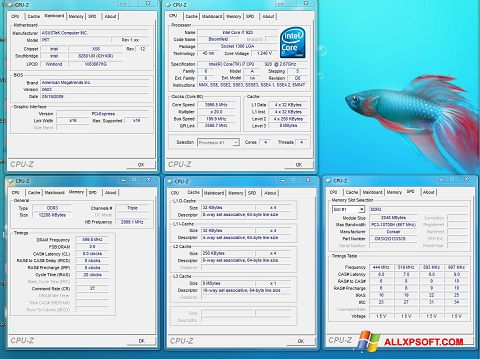 Screenshot CPU-Z para Windows XP