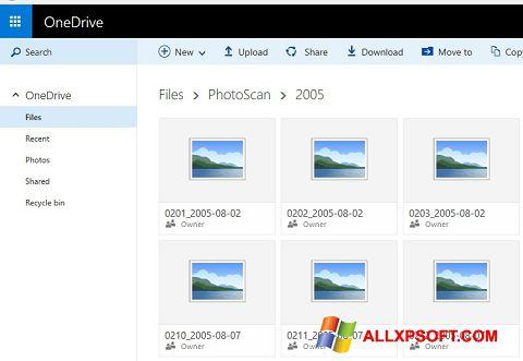Screenshot OneDrive para Windows XP